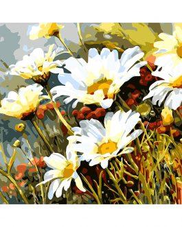 Daisy flower számfestő készlet