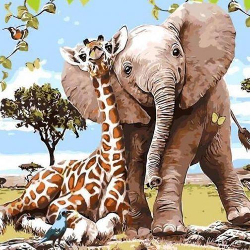 Elephant and   giraffe számfestő készlet