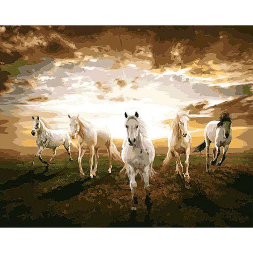 Fehér lovak számozott kifestő